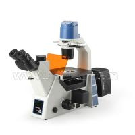 China Trinocular Fluorescence Microscope For Laboratory A16.0912-L wholesale