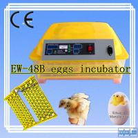 Newest EW-48 High Quality Automatic Humidity Chicken Incubator / Mini Egg Incubator With 12v-220v Power Manufactures