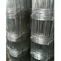 China Stainless Steel Field Wire Fence , Garden Border Edging / Galvanized Steel Wire on sale