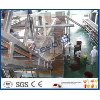 China Juice Making Factory Fruit And Vegetable Processing Machinery With Juice Processing Technology wholesale