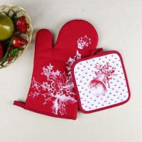 China Christmas Theme Highly Recommend Kitchen Cooking Pot Holder and Oven Mitten Glove wholesale