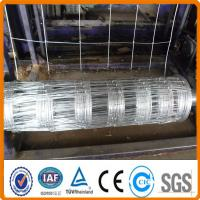 China Goat/farm/field wire fence hot sale prices on sale