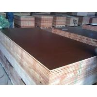 15mm black browm red film faced shuttering plywood construction plywood Manufactures