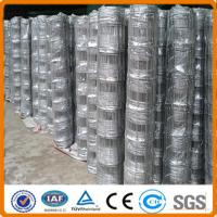 China High quality grassland for breeding low carbon field wire fence on sale