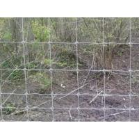 China Hinge Joint Poultry Field Wire Fence Netting With Hot Dip Galvanized Wire on sale