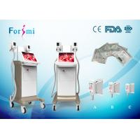 China Vetical antifreeze membrane for cryolipolysis slimming weight loss freeze fat machine on sale
