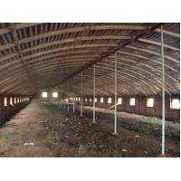 China Reusable Qualified Safety And Utility Fabricated Steel Chicken Shed Systems wholesale