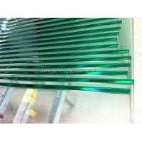 8mm Tempered Glass Frameless Fencing Panel for Swimming Pool with CE Manufactures