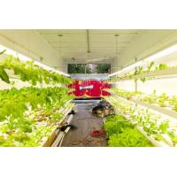 Hydroponic Farming Prefab Container Homes , Movable Modular Container Homes Manufactures