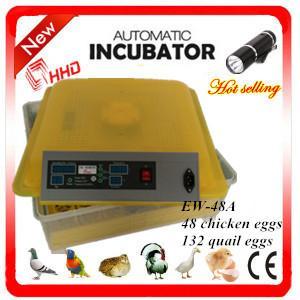 China Newest EW-48A automatic high quality chicken incubator / mini quail egg incubator high hatching rate wholesale