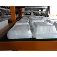 China Fully automatic robort arm disposable absorbent styrofoam tray making machine on sale