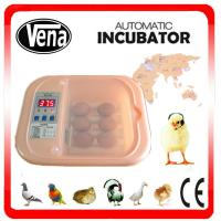 Favorable price CE certificate automatic chicken egg incubator in sale Manufactures