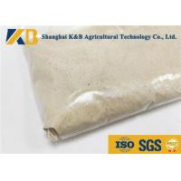 Chicken Feed Protein / Rice Protein Powder Ease Digestible For Feed Additive