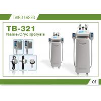 China Cryolipolysis Weight Loss Freeze Fat Machine / Coolshaping RF Cavitation Equipment on sale