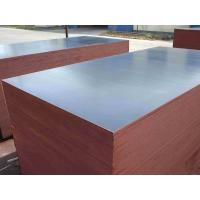 Quality poplar core wbp glue 18mm shuttering plywood/China film faced plywood/marine plywood for construction for sale
