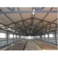 China Durable Prefabricated Steel Framing Cow / Horse Systems With Flexible High Space Utilization wholesale
