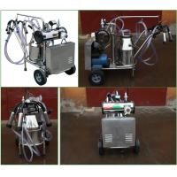 China stainless steel type milking machine equipment for cow and cattle on sale