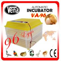 Baby Bird Incubators 12v/110V/220V full automatic 96 eggs VA-96 mini incubator for sale Manufactures