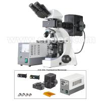 Infinite Binocular Fluorescence Microscope 3W LED Lamp B and G Filter A16.1032 Manufactures