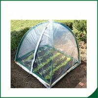 China Home Garden Mini Greenhouse Warm Houses For Growing Trees Or Flowers Plant Growth PVC coated Garden tunnel greenhouse on sale