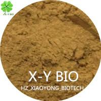 Tea Seed Powder Manufactures