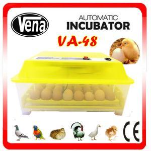 VA-48 Chicken Egg incubator for 48 eggs Manufactures