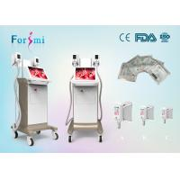 China beautiful appearance!!15 inch big screen cryolipolysis weight loss freeze fat cryotherapy beauty machine price China on sale