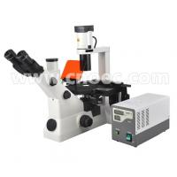 China Inverted Fluorescence Binocular Compound Microscopes 40X - 400X A16.0701 wholesale