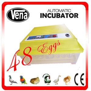 Fully automatic 48 Eggs Chicken Egg Incubator/Egg Incubator/Mini Egg Incubator VA-48 for sale Manufactures