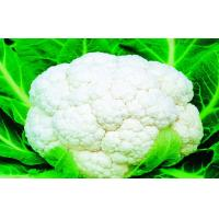 China Low Carbohydrate Freezing Fresh Cauliflower Preventing Prostate , Ovarian, Taste delicious on sale