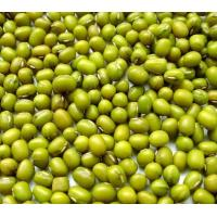 China pure natural  2016 new crop green mung beans on sale