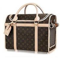 China Practical and beautiful dog house pet carrier on sale