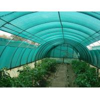 China HDPE Aschel Knitted Agriculture Shade Net For Greenhouse , 30gsm-300gsm wholesale