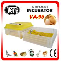 Full automatic High hatching rate mini chicken egg incubator VA-96 for sale Manufactures