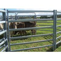 Iron Steel Cattle Fence Panel 42x115MM Tube Size For Protecting Horse
