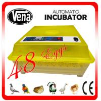 China Digtal control small size commercial poultry egg incubator for sale wholesale