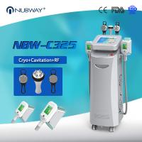 China 2016 newst!! cryolipolysis cool sculpting/ fat freezing weight loss/ cryolipolysis fat reduction salon beauty equipment on sale