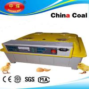 China Coal full automatic 48 eggs incubator /egg tester for free Manufactures