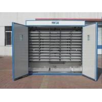 Duck Egg Incubator(Capacity : 4536) Manufactures