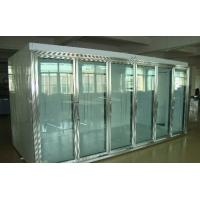 China Back Side Loading Glass Door Freezer Large Capaciy Remote System Copeland Compressor on sale