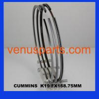 China cummins engine parts piston ring KT19/KT38(4089500,4955975) wholesale