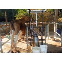 China Homemade Small Milking Machine With Milking Cluster Group / Milk Teat Cup on sale