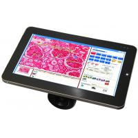 "HD 5.0MP 10.1"" LCD Screen Windows 7 LCD Digital Camera / Scopepad / Tablet Manufactures"