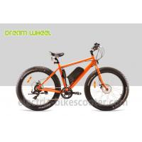 48 Volt 4 Inch Electric Beach Bike Fat Tire Snow Bicycle Orange With Front Motor Manufactures