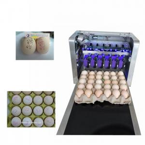 Eggs Batch Code Food Inkjet Printer , Continuous Laser Marking Machine