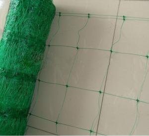 Custom HDPE Plant Support Netting , Vegetable Support Net For Legume