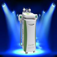 China Hottest Sales!!!! Weight Loss Slimming Fat Freeze Cryolipolysis Beauty Machine on sale