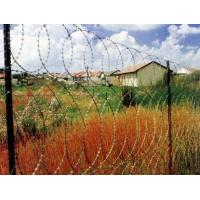 China BTO-28 BTO-30 Zinc Plated High Tensile Barbed Wire ,  Wire Barrier Fencing wholesale