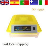 220V Small Size chicken egg incubator price 56 Eggs of Best Selling with Cheap Price Mini Egg Incubator Manufactures
