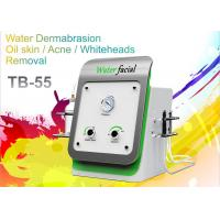 China Spa Facial Cleaning Home Microdermabrasion Machine For Skin Care Acne Removal on sale